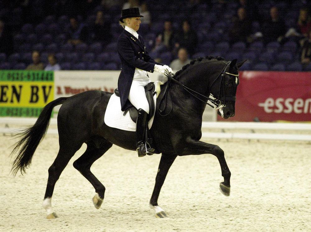 Clearwater Grand Prix >> Anne van Olst – Van Olst Horses